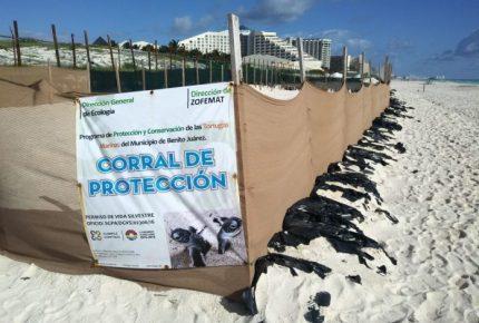 Juicio de lesividad echaría abajo Gran Solaris Cancún