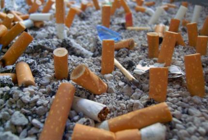 Colillas de cigarros mayor contaminante de los océanos