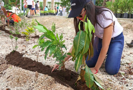 """Siembran más mil 700 plantas nativas en programa de reforestación """"Adopta un árbol"""""""