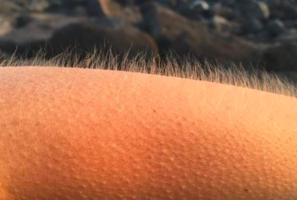 """La música te pone la piel """"chinita"""", averigua por qué"""