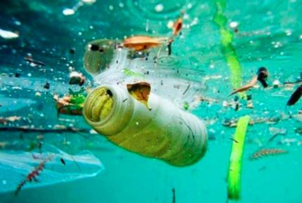 Buscan regular el uso de plásticos en empresas locales