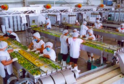 Yucatán segundo lugar en crecimiento económico