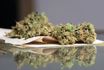 Corte aprueba consumo de marihuana con fines recreativos