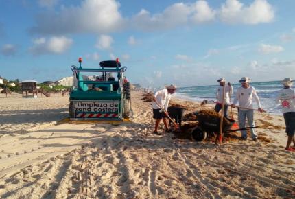 Impulsan acciones integrales para limpieza de playas