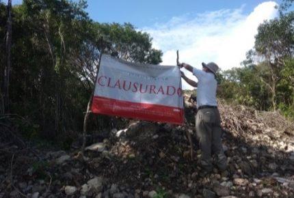 Clausura Profepa predio en Solidaridad por cambio de uso de suelo sin autorización