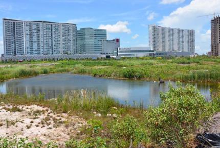 Propuesta para convertir a #MalecónTajamar en área protegida es electorera: CCE