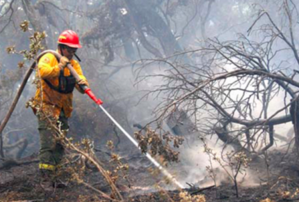 Capacitan a personal para combatir incendios forestales