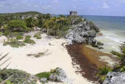 Peligra la Semana Santa en Cancún por arribo masivo de sargazo e inseguridad
